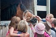 kinderen aaien een paard