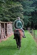 Paardrijden voor elke leeftijd