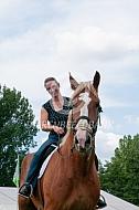 Vlaams paard