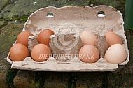 Doosje met eieren