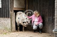 Kleine varkens worden groot
