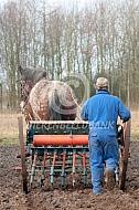 Zaaimachine achter trekpaard