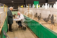 Kleindierententoonstelling