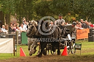 Powerhorse competitie