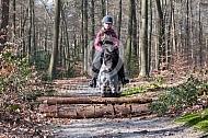 Springen met mijn Shetlander