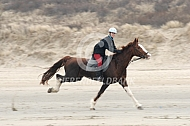 In volle galop langs het strand