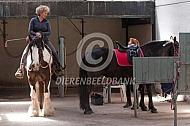 Opzadelen paarden