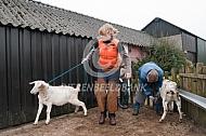 Klauwverzorging geiten