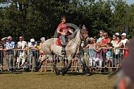 Ruiter op Belgsch trekpaard