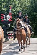 Met je paard over het spoor