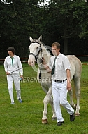 Tijdens de keuring Groninger paard