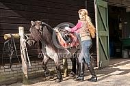 Opzadelen shetlander pony