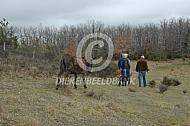 Nieuwsgierige ezels onderweg