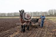 mest verspreiden met paard en wagen