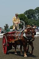 Autentiek aanspanning in Engeland met Suffolk paarden
