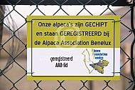 Bordje Alpaca Association Benelux