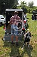 Vervoer van geiten