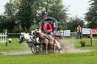 Menwedstrijd met shetlanders