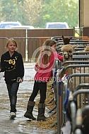 Kinderen tijdens de alpacashow