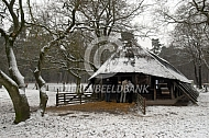 Schaapskooi in de winter