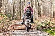 Springen met shetlander in het bos