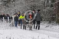 Sneeuwwandeling met ezels