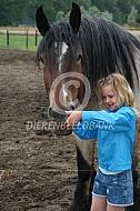 Trekpaard met meisje