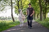 Een wandeling met de lama
